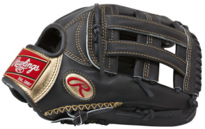 Rawlings Gold Glove Reviews